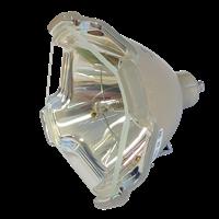 EIKI LC-SX6 Lampe ohne Modul
