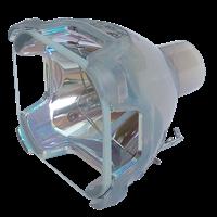 EIKI LC-XB15D Lampe ohne Modul