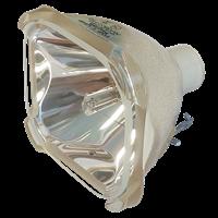 EIKI LC-XNB2U Lampe ohne Modul
