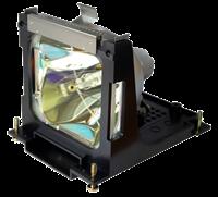 EIKI LC-XNB3DS Lampe mit Modul