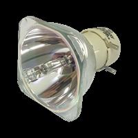 SMARTBOARD SB480+ Lampe ohne Modul