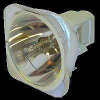 SMARTBOARD UF35 Lampe ohne Modul