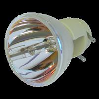 SMARTBOARD UX60 Lampe ohne Modul