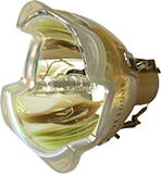 Lampe ohne Modul